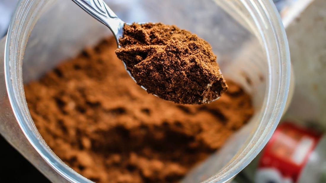 best-protein-powder