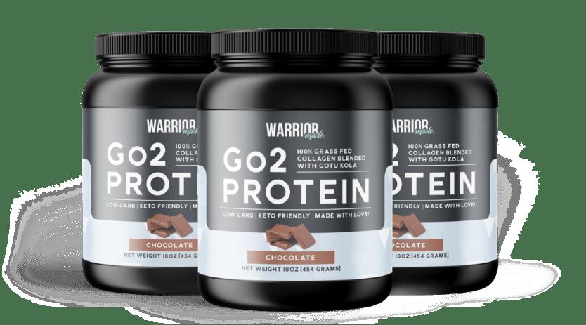 3 Month Go2 Protein