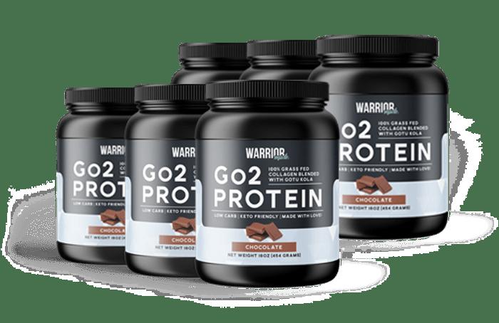 6 Month Go2 Protein